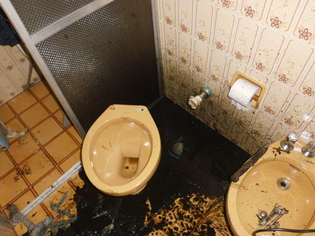 desentupir vaso sanitário em curitiba